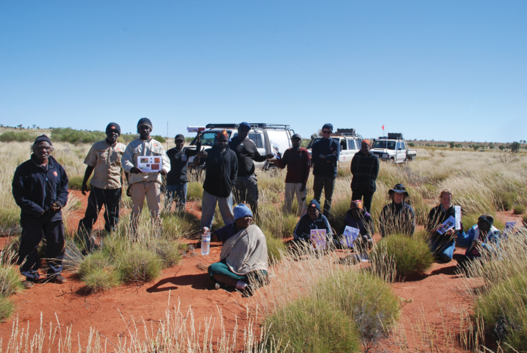 A Martu method for monitoring mankarr (greater bilby)