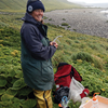Post-eradication monitoring on Macquarie Island
