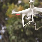Using drones for biodiversity monitoring
