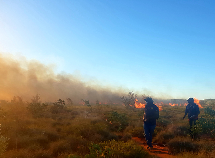 Pirra Warlu (desert fire): New ways for traditional burning